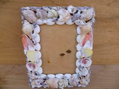 Vintage Old Shell Art Picture, Photo Frame (A404)