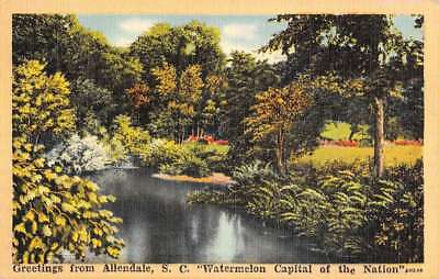 Allendale South Carolina River Waterfront Greeting Antique Postcard K77196