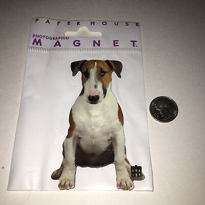 "New Bull Terrier Dog 2"" x 3 1/2"" Long Magnet by Paper House Productions"