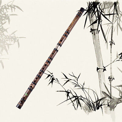 2 Sections Bamboo Flute Xiao Professional Instrument Chinese Shakuhachi Set G 1X