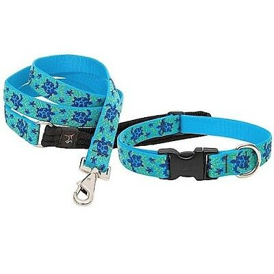 "NEW Sea Turtle Reef Blue Dog Collar or Leash in 1"", 3/4"" or 1/2"" by Lupine"