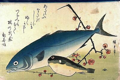Set of 4 Japanese Repro Woodblock Prints - Shoal of Fishes By Ando Hiroshige