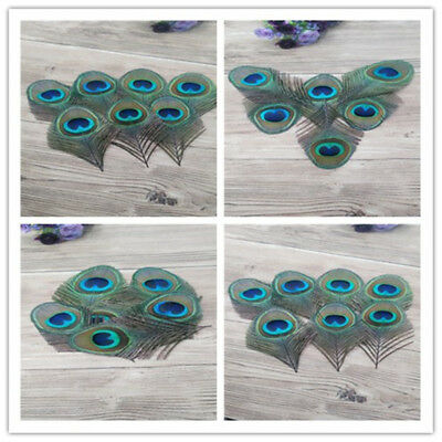 Wholesale 10-1000pcs 8-12 cm feathers peacock eye clothing&accessories