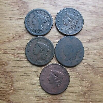 5 Large Cents See Photos  @ A Village Coin Bullion