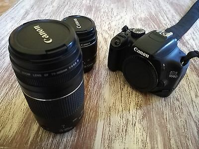 CANON EOS 550D - kit EF-S 18-55 mm. + EF 75-300mm.