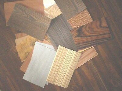 Exotic Mix of wood veneers  (  50 or more pieces )