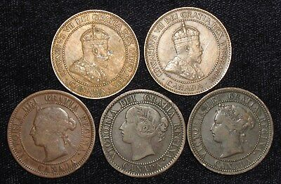 5 Large Cents from Canada.  1859-1909.  No Reserve!!