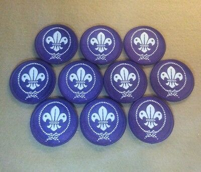 World Scouting Crest Patch - Boy Scouts - Bsa World Crest (Lot Of 10)