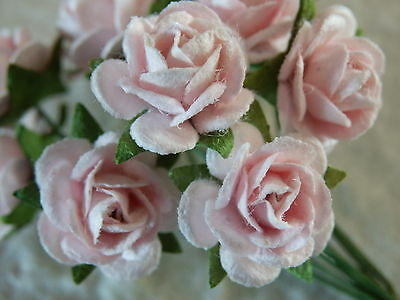 50x12mm Paper PALE PINK ROSES CL124:::Handmade Wedding Crafts Cards Scrapbooking