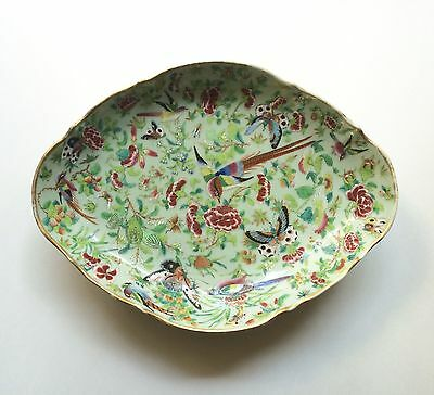 Large Celadon Famille Rose Porcelain Tazza Bowl Birds Insects 1850 Qing Daoguang