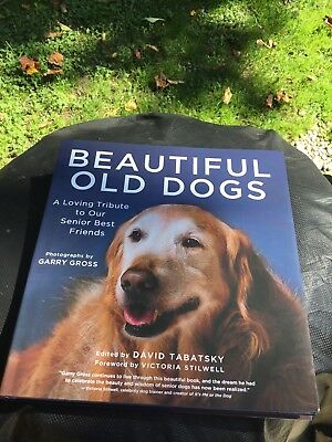 Beautiful Old Dogs A Loving Tribute To Our Senior Best Friends Tabatsky New Deal