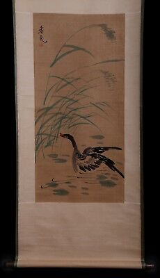 Marvelous Unique Rare Old Chinese Scroll Hand Painting Duck Landscape KK705