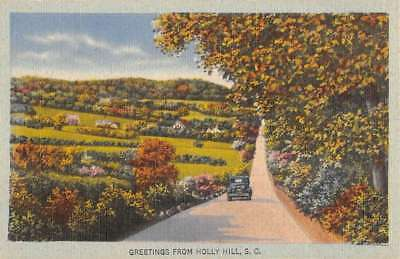 Holly Hill South Carolina Scenic Roadway Greeting Antique Postcard K77880