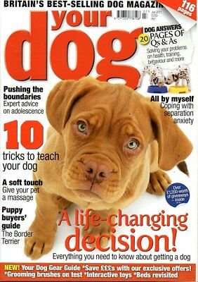 Your Dog Magazine July 2011 PUPPY BUYERS GUIDE THE BORDER TERRIER TRAINING TIPS