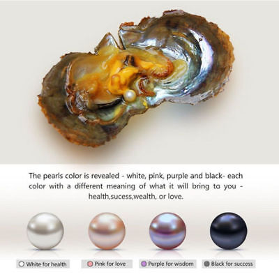 NEW 1PC7-9mm Round akoya Pearl in Oyster Clam Birthday Gifts NEW HOT Pendants PT