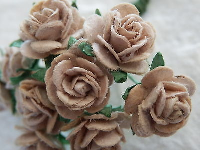 50 x 10mm Mulberry Paper BEIGE ROSES Wedding craft supplies Cards Scrapbooking