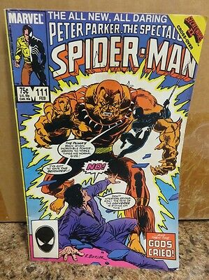 Feb 1986 Marvel Comics Spectacular Spider-Man #111