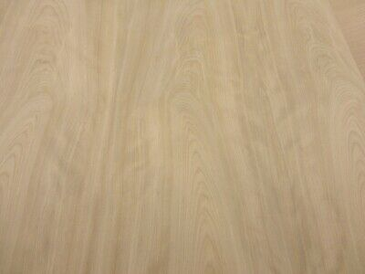 """Pine White wood veneer 24/"""" x 96/"""" with paper backing 1//40th/"""" thickness /""""A/"""" grade"""