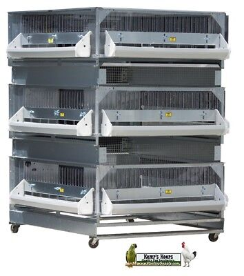Brand New GQF 0703 Heated Poultry Box Brooder PLUS 2 Grow Pens baby chicks birds