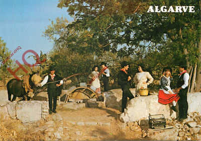 Picture Postcard: Algarve, Rural Scene With Traditional Costume And A Donkey