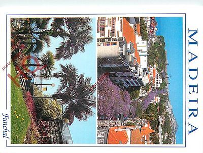 Picture Postcard:;Madeira, Funchal (Multiview)