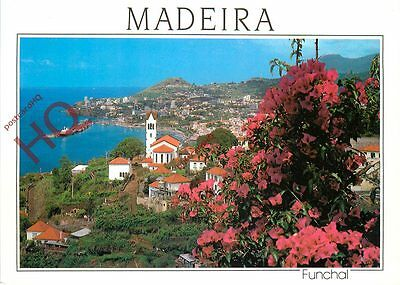 Picture Postcard--Madeira, Funchal, Western View