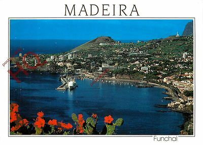 Picture Postcard:-Madeira, Funchal