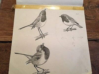 Original Book Illustration By Robert Gillmor for Book Life Of The Robin