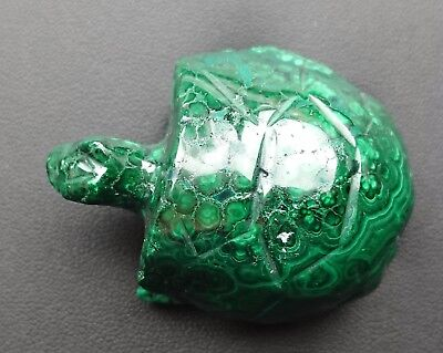 Malachite 116 grammes Tortue - Natural tortoise Malachite