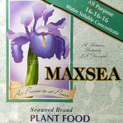 Maxsea Fertilizer 16-16-16, 2 Gallons, Carnivorous Plant Food, Micronutrients