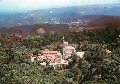 Picture Postcard- Bussaco, Pelace-Hotel And Forest