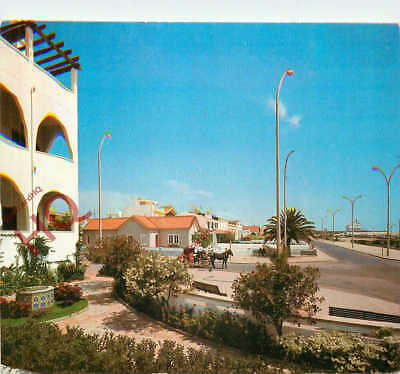 Picture Postcard, Monte Gordo, Horse And Carriage