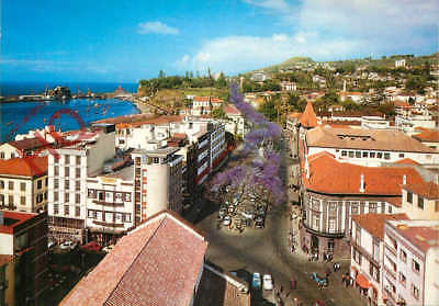 Picture Postcard: Madeira, Funchal