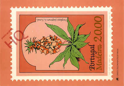 Picture Postcard- Portugal, Madeira Stamp, Isoplexis Sceptrum