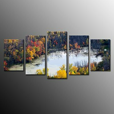 FRAMED Modern Landscape Art Print on Canvas Poster Wall Home Decor Autumn Forest