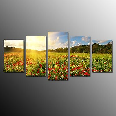 FRAMED Red Poppy Field Giclee Canvas Print Wall Decor Art  Flowers Painting 5pcs