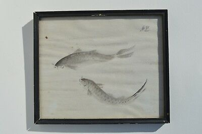 Vintage Chinese/japanese Hand Painted Ink Painting Of 2 Carp Fishes