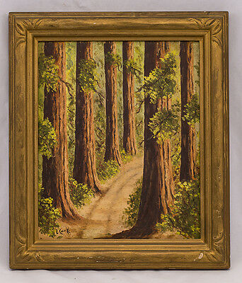 """California Redwoods"" Oil on Board * Early 20th Century *"