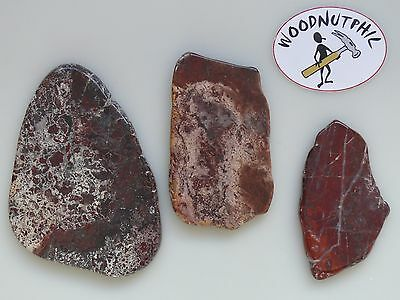Tasmanian Jasper Slab Pack 2 of 3 pieces - Total Wt. 400g Cabbing Stone Lapidary