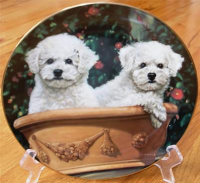 Danbury Mint BICHON FRISE Potted Pair Dog  Limited Edition Plate