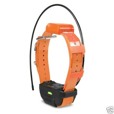 Dogtra Pathfinder TRX Tracking Only Collar Orange PATHFINDER-TRX-RX-ORG