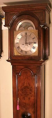 "Antique Walnut "" London ""  Brass  Moon Phase  Grandfather / Longcase Clock"
