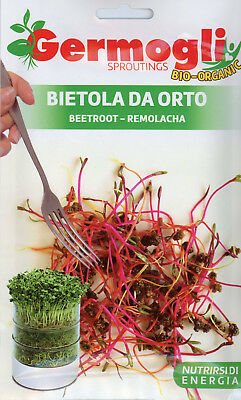 Franchi Germogli Organic Beetroot Seed for sprouting