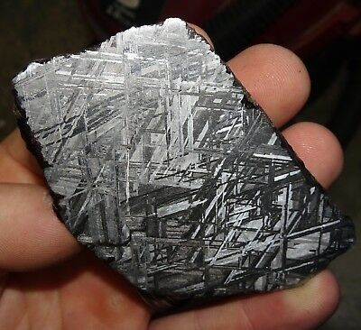 Amazing 218 Gm. Muonionalusta Etched Meteorite End Cut