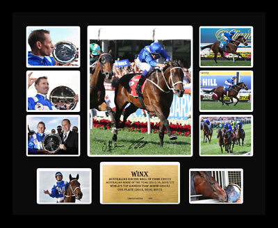 Winx 3x Cox Plate Winner Waller Bowman Signed Limited Edition Memorabilia Framed