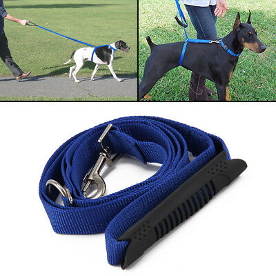 how to choose an anti-pulling dog leash