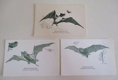 Three Vintage Illustrated Bat Postcards - National Museum of Victoria - 1970s