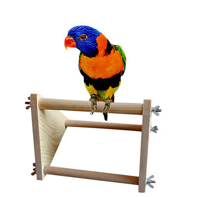 Parrot Bird Perch Stand Play Fun Toys Gym Wooden Activity Table Top Playstand.PR