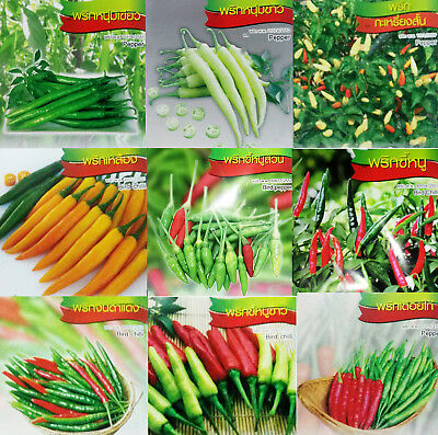 Thai chili pepper seeds - Hot and super hot spicy