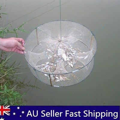3/4/5 Imports Fishing Pot Net Fish Shrimp Minnow Crab Bait Cast Mesh Trap Cage